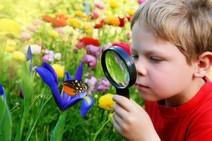 1384119015_deti-i-priroda